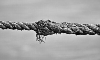 trauma attachment and repair